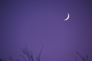 waxing crescent moon purple